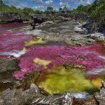 ¿Sabias que uno de los ríos más hermosos del mundo esta en Colombia?