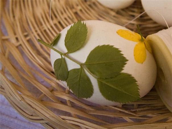 huevo con rama