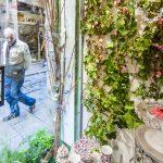 Escaparate de La Botiga en Temps de Flors Girona
