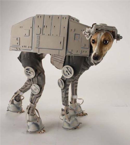 Perro disfrazado de robot de la guerra d elas galaxias