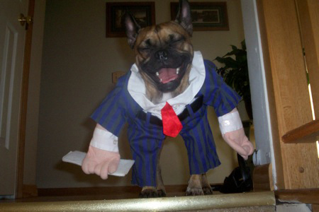 boxer con con traje y corvata