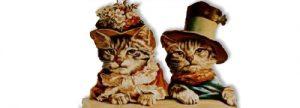 Regalos Originales para Gatos