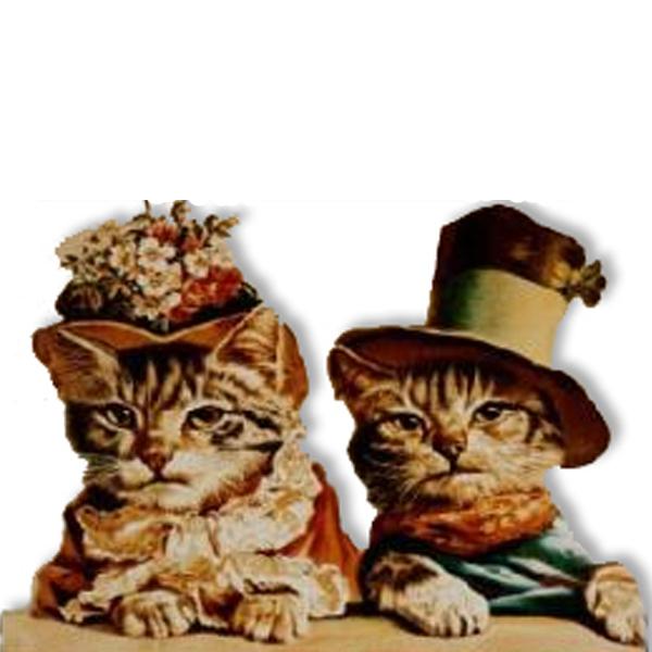 Regalos para Gatos