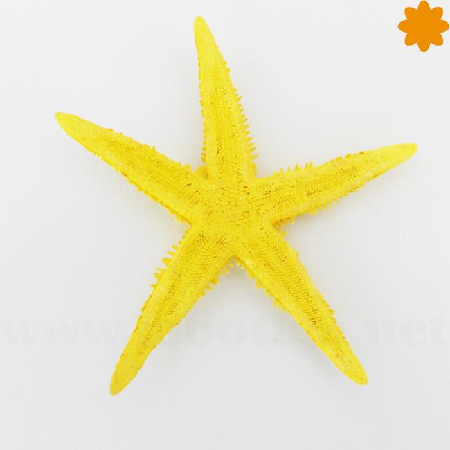 Divertida estrella de mar de color amarillo